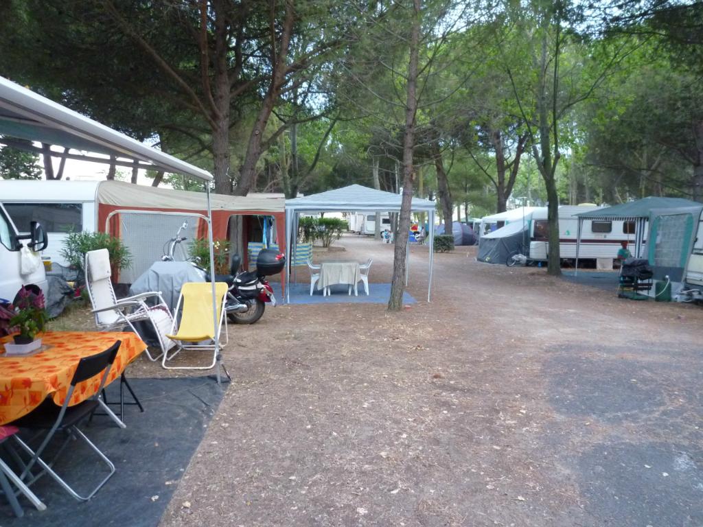 allee-du-camping